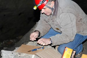 Craig Frank conducting field studies on bats in an abandoned mine in upstate New York. Contributed photo