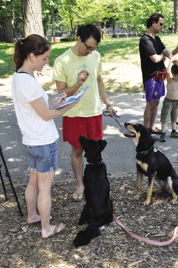 """Katherine Long, a GSAS doctoral candidate, helps raise donations and awareness for animal rescue services by offering her own pets for rental to Manhattan's many """"dogless."""" Photo by Joanna Klimaski"""