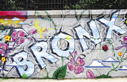 Photo and Graffiti by Tats Cru
