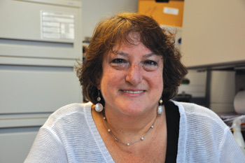 Amy Horowitz, Ph.D., has been principal investigator on roughly $9 million in grant-funded studies on the psychosocial effects of aging and sensory loss. Photo by Janet Sassi