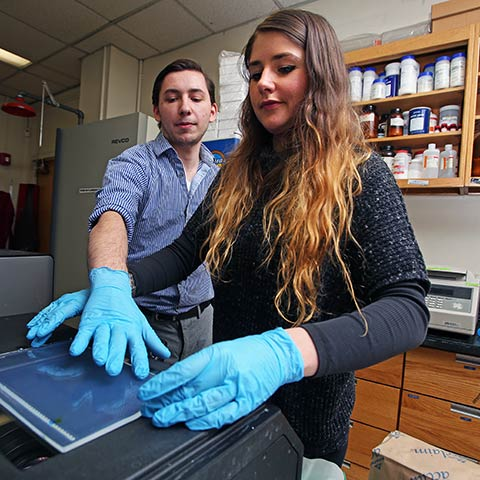 Anthony Evans and Katherine Reid work with a transilluminator to examine cells. (Photo by Bruce Gilbert)