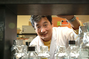 Masaaki Hamaguchi, Ph.D., peers into the future of cancer research. Photo by Chris Taggart