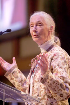 Jane Goodall speaks to educators at the third-annual Celebration of Teaching and Learning. Photo by Bruce Gilbert