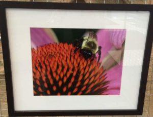"""Busy Bee"" by Dee Ruza"