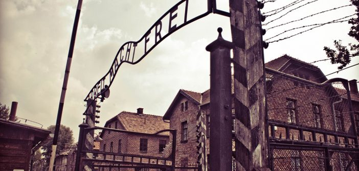 Fellowship at Auschwitz for the Study of Professional Ethics