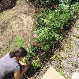 LC Garden