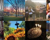 Instagram 2016: Fordham Staff's Top Pics for the Year