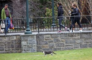 A feral cat walks by students on the Rose Hill campus