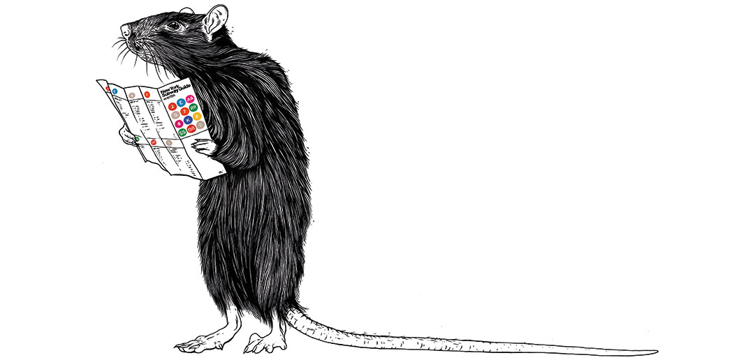 Illustration of a rat reading a New York City subway guide