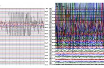 Mexican seismic readings go off he chart.
