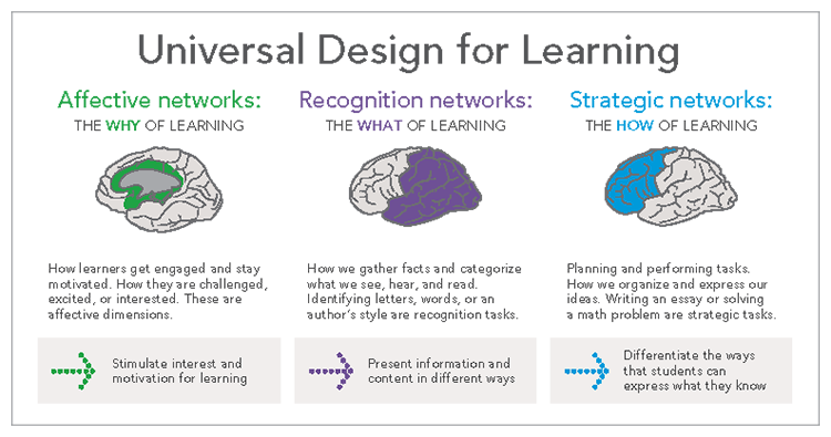 The three primary brain networks involved in Universal Image: Design for Learning (UDL).