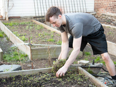 Gabelli School junior Michael McCarty removes weeds from a garden bed at St. Rose's Garden.