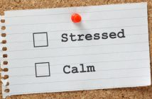 """Stressed or Calm"" Tick Boxes on a paper note pinned to a cork notice board."