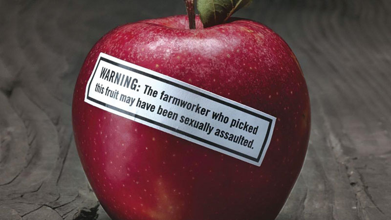A red apple with a sticker on it that reads: WARNING: The farmworker who picked this fruit may have been sexually assaulted. Image courtesy of the Center for Investigative Reporting