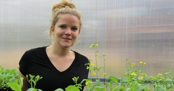Elena Hamann surrounded by field mustard plants in the greenhouse at the Louis Calder Center