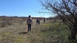 Faculty members walk in the brush
