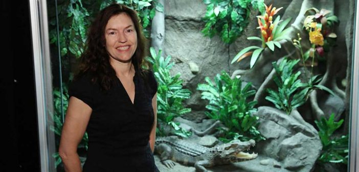 PBS and Smithsonian Feature Professor's Research on Crocodiles