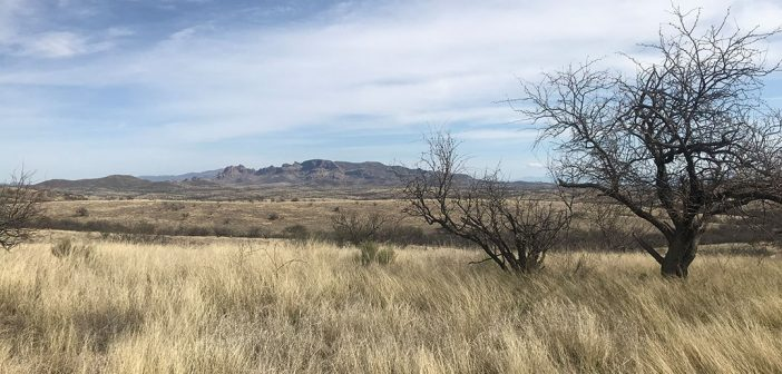 A view of the hilly, semi-arid terrain near Nogales, Arizona, not far from the U.S.-Mexico border