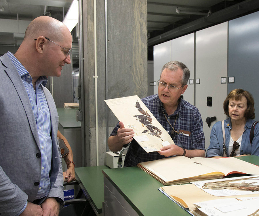 Robbin Moran showing a plant sample in the New York Botanical Garden's herbarium