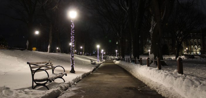 Rose Hill walkway at night in snow